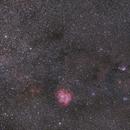 NGC 2264 widefield,                                Frank Rauschenbach