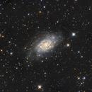NGC 2403 (Caldwell 7),                                Madratter