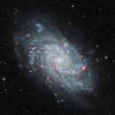 M33 Triangulum Galaxy,                                Shawn