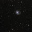 M 101 - Pinwheel galaxy , NGC 5474,                                Gérard Nonnez