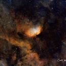 Sh2-101   The Tulip Nebula,                                Carl Weber