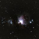 Orion Nebula,                                Dominic