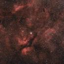 Gamma Cygni Region,                                ThomasR