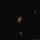 M81 Galaxia de Bode & M81 Galaxia del Cigarro,                                Lluis Romero Ventura