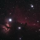 Horsehead and Flame Nebulas,                                Matthew McLaughlin