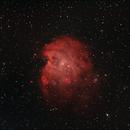 Monkeyhead nebula in dual narrowband,                                Janos Barabas