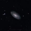 M88,                                rkayakr