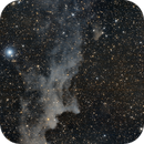 IC2118 - Nebulosa de la Cabeza de la Bruja,                                José Fco. del Aguila (daguila)
