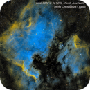 NGC 7000 & IC 5070 - The North America and Pelican Nebulae  SHO,                                Paul Borchardt
