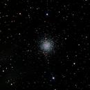 M 79,                                Thomas Westphal