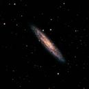 NGC 253 Galaxia del Escultor,                                Ernesto Arredondo