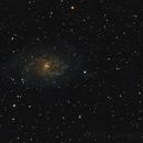 M33 - Triangulum Galaxy,                                guvenozkan