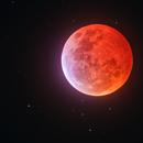 Super Blood Wolf Moon 2019,                                  Min Xie