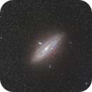 M31,                                Gregory