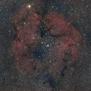 IC 1396 - nébuleuse de la trompe de l'éléphant,                                Gérard Nonnez