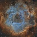 Rosette Nebula,                                Paddy Gilliland