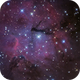 Gum 15,                                Insight Observatory