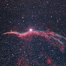 NGC 6960 - Cirrusnebel - Sturmvogel,                                Paul Schuberth
