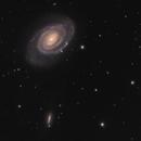 Cosmic Quartet - NGC5317 (NGC5364), NGC5363, NGC5356 and NGC5360,                                Michael Feigenbaum