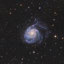 M101 - LRGBHA Collaboration Project,                                Markus Bauer