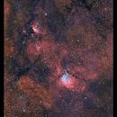 NGC 6823,                                Metsavainio