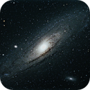 M31 Andromeda Galaxy,                                Chief