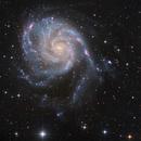 "Pinwheel Galaxy (M101) from < 1"" seeing,                                KuriousGeorge"