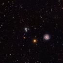 NGC 3184,                                Tom Carrico