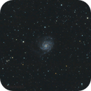 M101,                                Brett