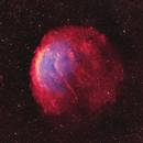 Sh2-216 Bi-Color RBG Stars,                                John Travis
