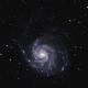 Pinwheel Galaxy (M101),                                Arnau Romaguera C...