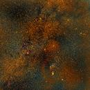 Orion Molecular Cloud Complex and Neighbors,                                Shailesh Trivedi