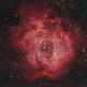 NGC2244 Rosette Nebula,                                Po-Liang, Cheng
