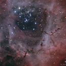 The Rosette Nebula HaOiiiRGB,                                Teagan Grable