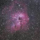 IC410 Tadpole Nebula,                                Hojong Lin