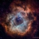 Rosette Nebula (NGC 2244) narrowband,                                HaSeSky