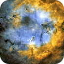 IC1396 Elephant Trunk and Ionizing Gas Field,                                Joel Quimpo
