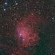Flaming Star Nebula (IC405; Sh2-229),                                Pam Whitfield