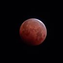 Lunar Eclipse from San Diego on 5/26/21 @  4:19 AM,                                KuriousGeorge