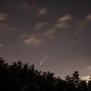 La comète Néowise au 15 juillet 2020 (3),                                Corine Yahia (RIGEL33)