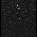 Widefield around M37,                                William Maxwell