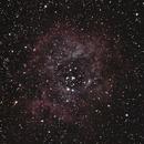 Rosette Nebula,                                murray8144