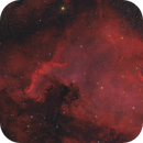 NGC 7000 North America Nebula,                                Stefan-Harry-Thrun
