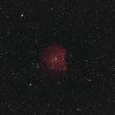 NGC2175 Monky Head nebula,                                Janos Barabas