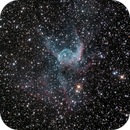 NGC2359 Thor's Helmet,                                Nicholas Jones