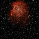 Monkey Head Nebula,                                Rick Gaps