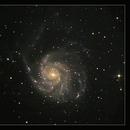 M101,                                Hermann Schieder