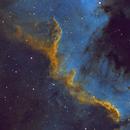 Cygnus Wall,                                Ron