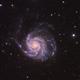 M101,                                James Patterson