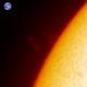 Sun - Ha - 10:39UT - 25 May 2020 - Prominence,                                Roberto Botero